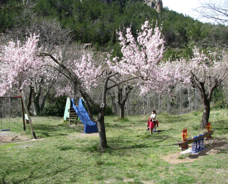 CampingLosCloticos_zonainfantil
