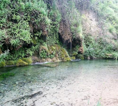CampingLosCloticos_3