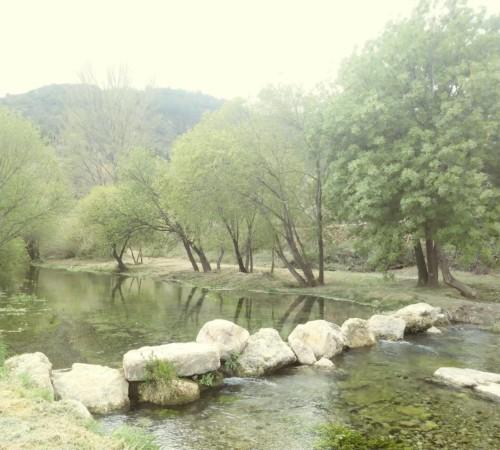 CampingLosCloticos_LaLuz0